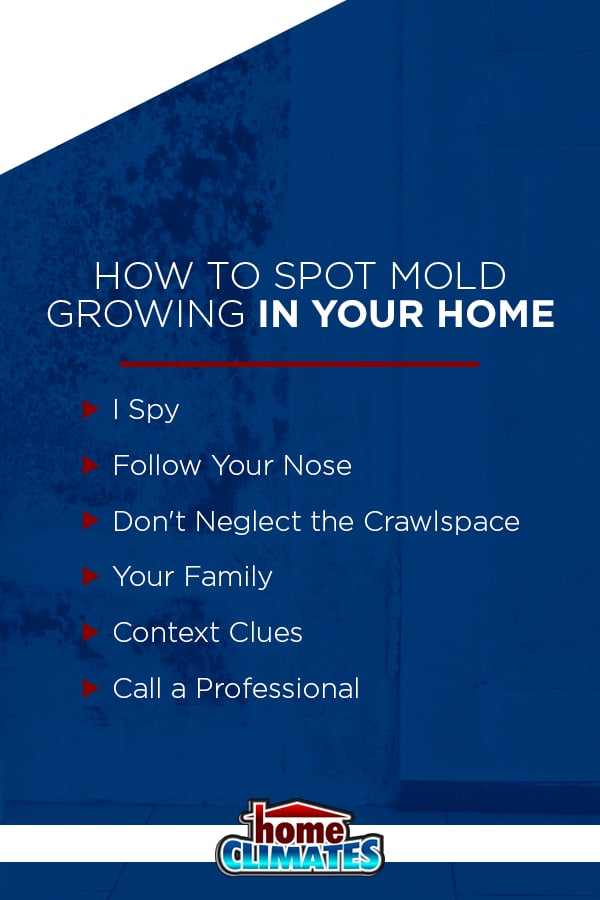 how to spot mold growing in your home