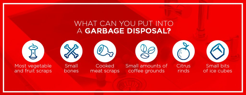 6 things you can put down your garbage disposal