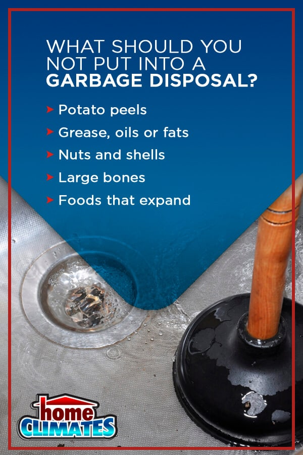 examples of what you shouldn't put down your garbage disposal